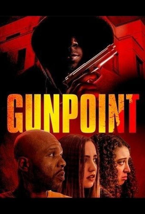 Gunpoint 2020 смотреть онлайн бесплатно