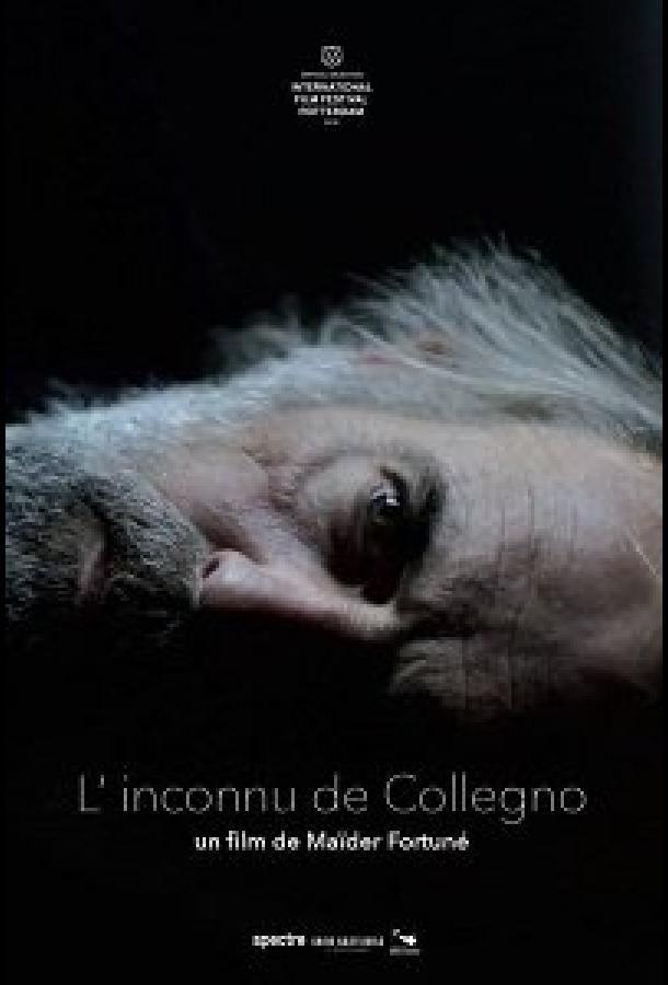 Незнакомец из Колленьо 2019 смотреть онлайн бесплатно