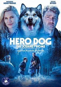 Собака-герой: путешествие домой 2021 смотреть онлайн бесплатно