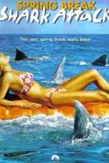 Нападение акул в весенние каникулы