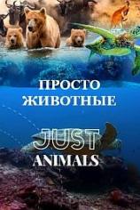 Просто животные