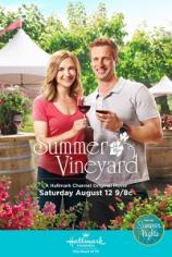 Лето в винограднике