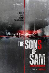 Сыновья Сэма. Падение во тьму