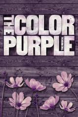 Цвет лиловый