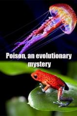 Яд. Достижение эволюции