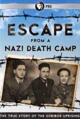 Фашистский лагерь смерти. Большой побег