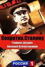 Секретно. Сталину. Главная загадка Великой Отечественной войны