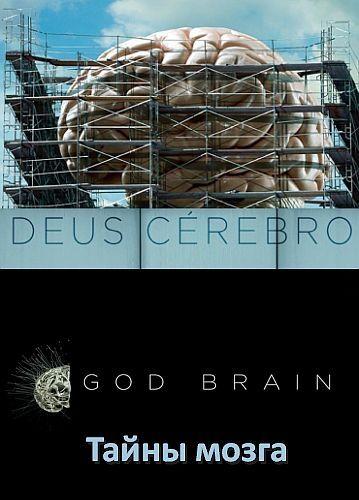 Сериал Тайны мозга смотреть онлайн бесплатно все серии
