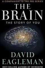 Мозг с Дэвидом Иглманом