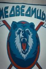 Медведицы